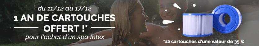Cartouches offertes pour un Spa gonflable Intex acheté
