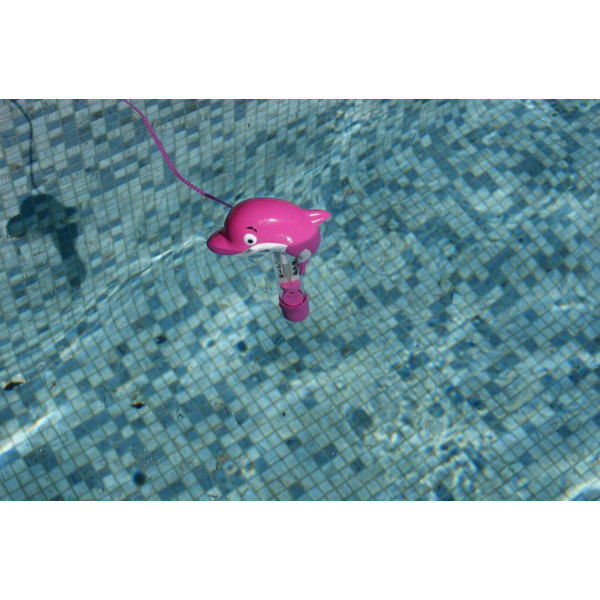 thermometre dauphin rose dans l'eau