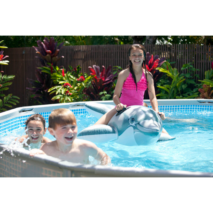 Dauphin gonflable pour piscine intex for Aspirateur piscine gonflable intex