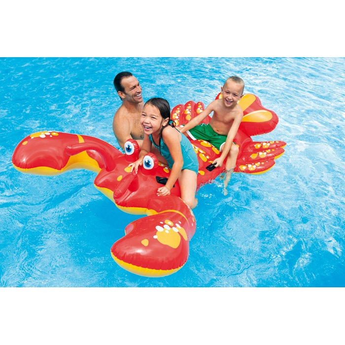 Homard gonflable intex for Piscine x cani