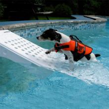 Rampe de sortie de piscine pour chien Skamper Ramp Procopi - BWT My Pool